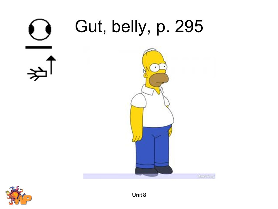 Gut, belly, p. 295 Unit 8 Unit 8 Unit 8