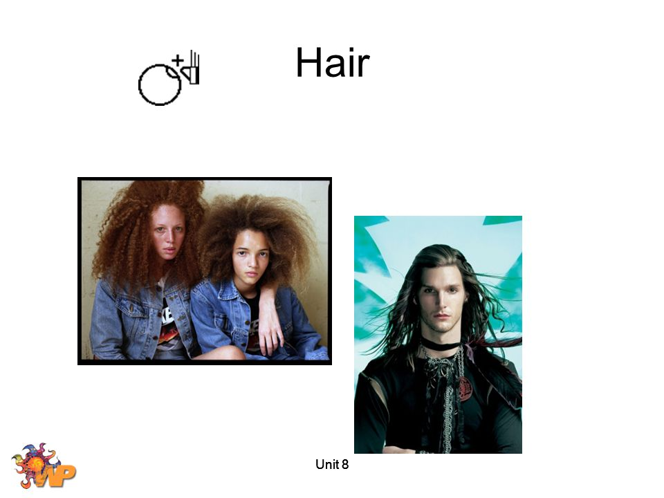 Hair Unit 8 Unit 8 Unit 8