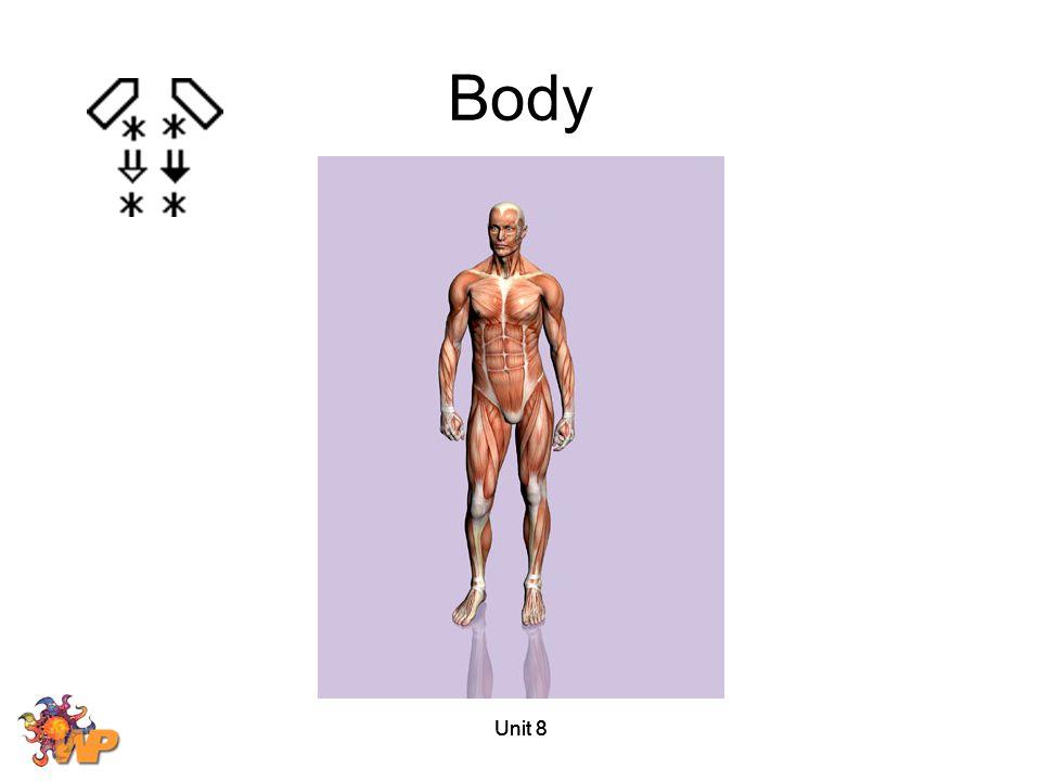 Body Unit 8 Unit 8 Unit 8