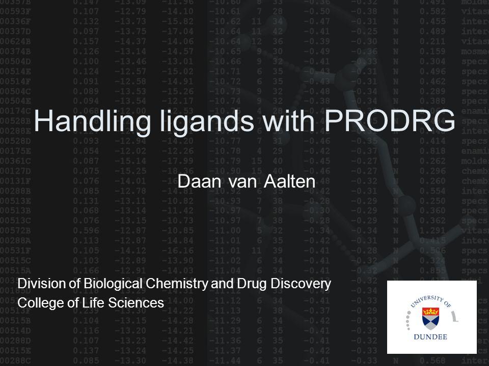 Handling ligands with PRODRG