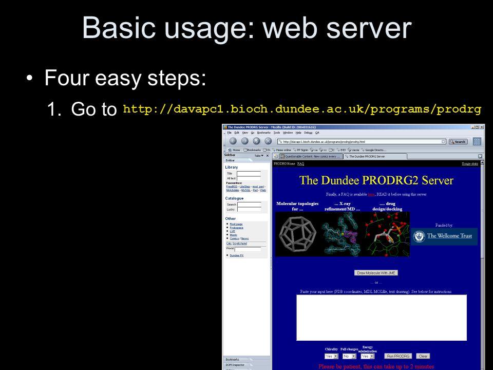 Basic usage: web server