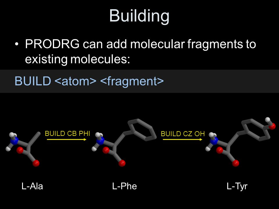 Building PRODRG can add molecular fragments to existing molecules: