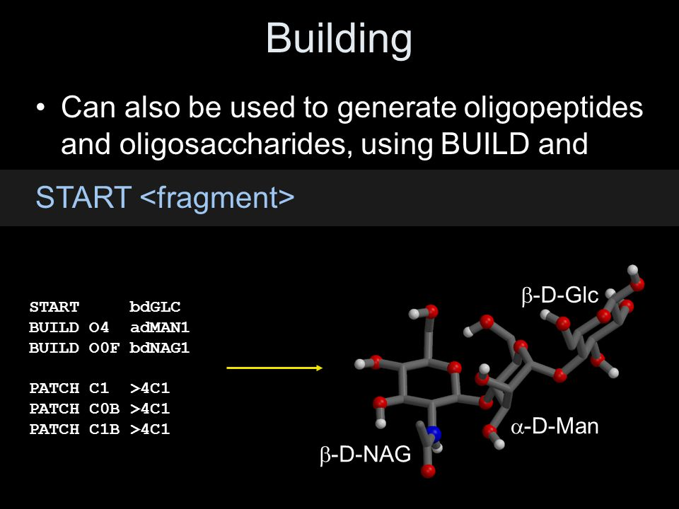 Building Can also be used to generate oligopeptides and oligosaccharides, using BUILD and. START <fragment>
