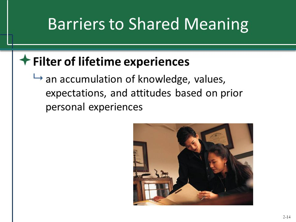 Barriers to Shared Meaning