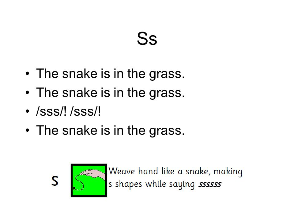 Ss The snake is in the grass. /sss/! /sss/!