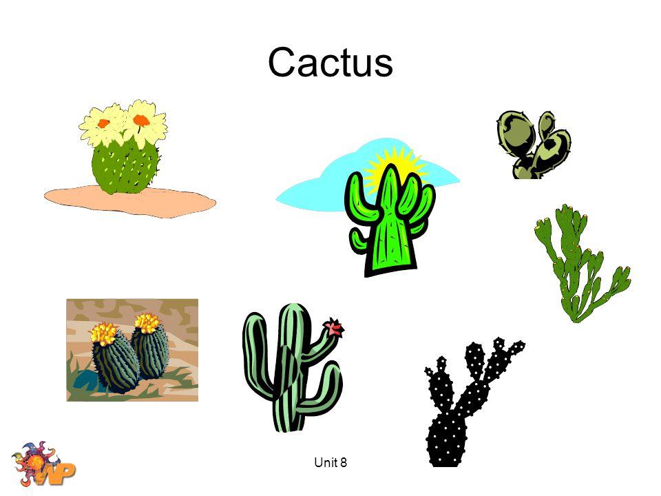 Cactus Unit 8