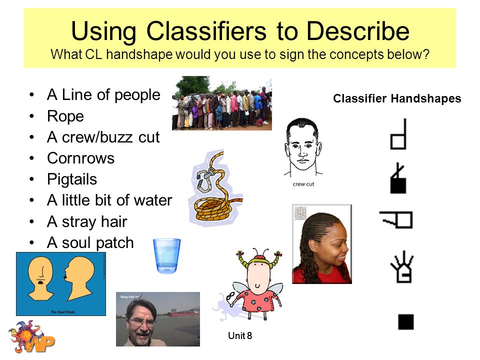 Using Classifiers to Describe What CL handshape would you use to sign the concepts below
