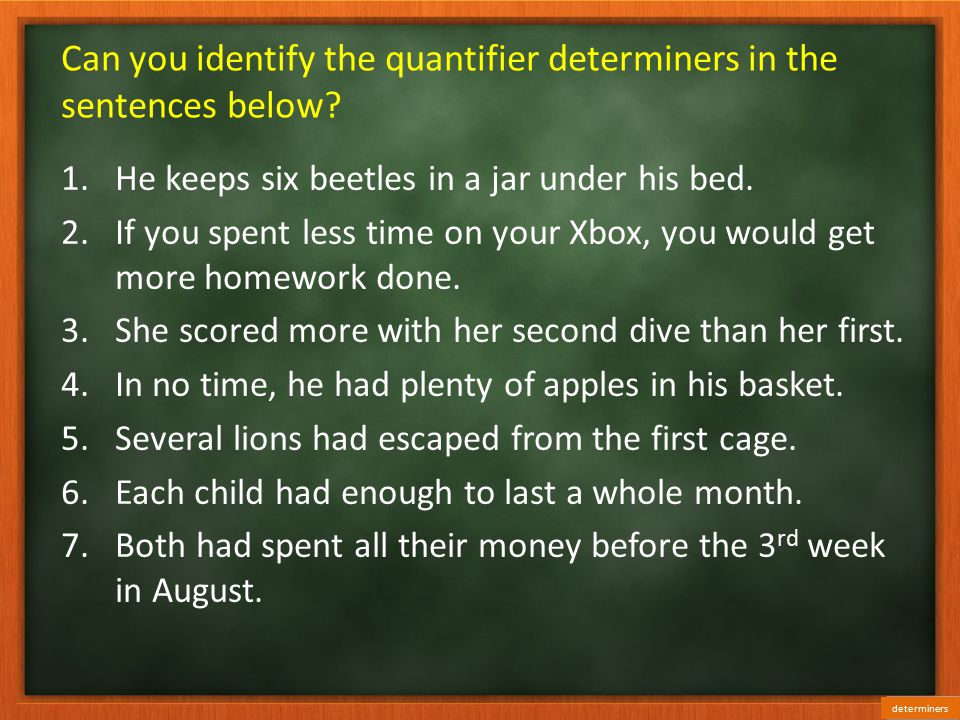 Can you identify the quantifier determiners in the sentences below