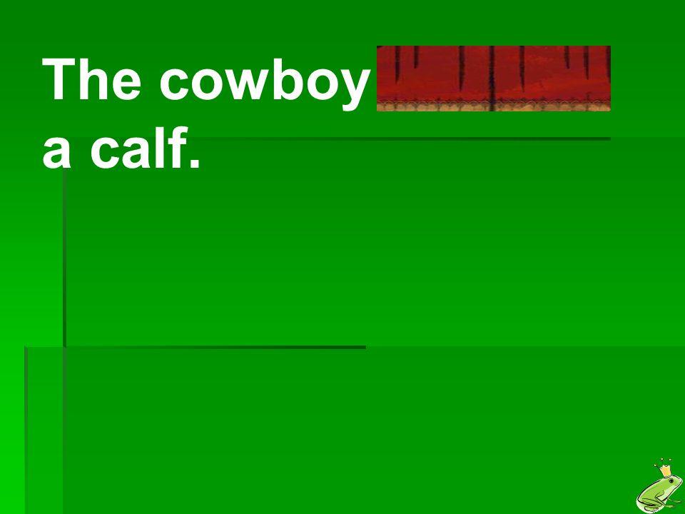 The cowboy lassoed a calf.