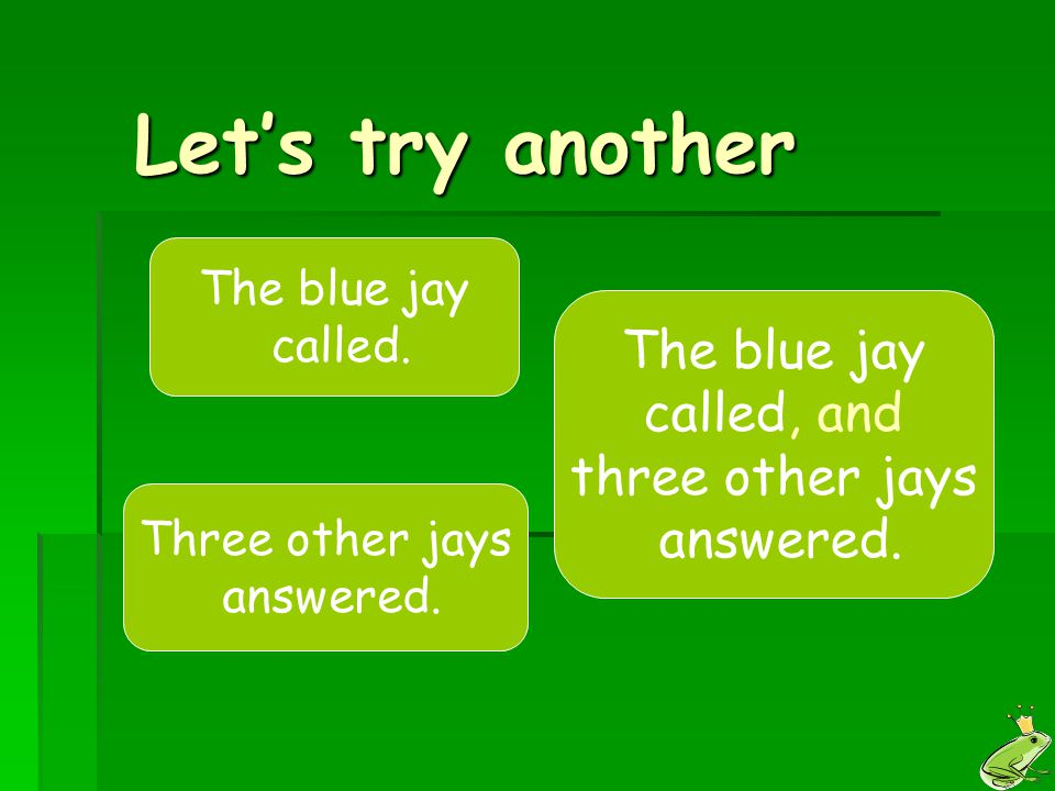 Let's try another The blue jay called, and three other jays answered.