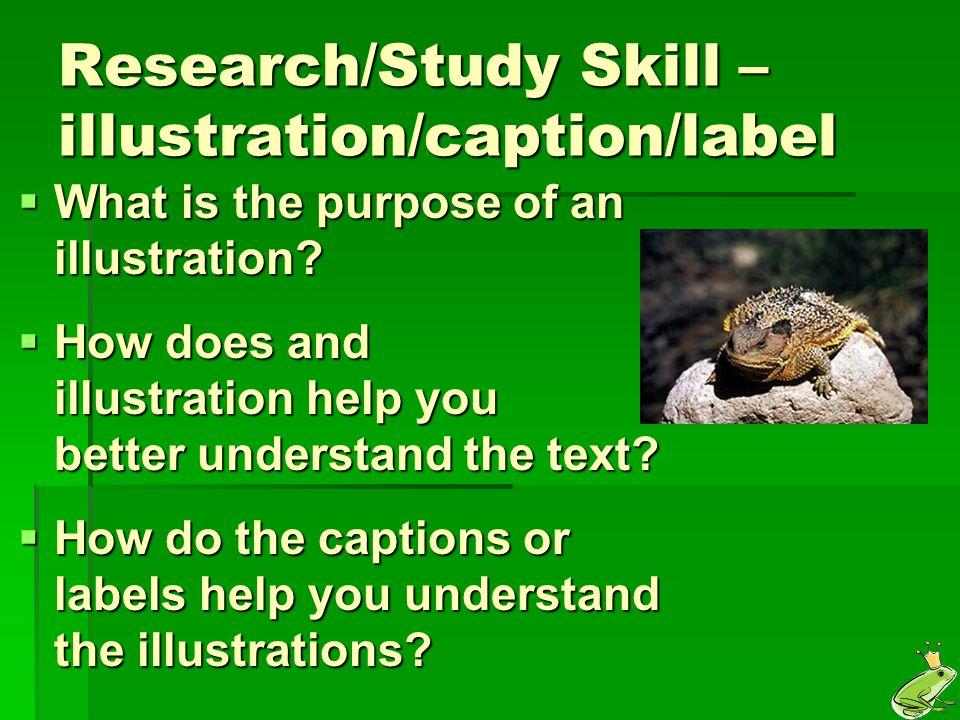 Research/Study Skill – illustration/caption/label