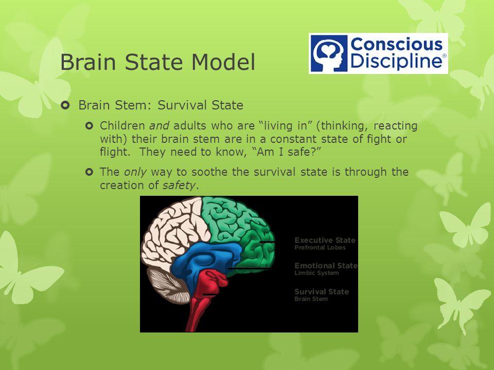 Brain State Model Brain Stem: Survival State