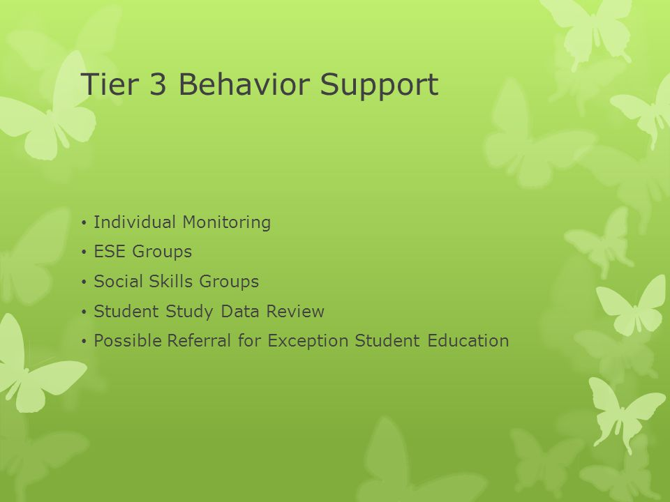 Tier 3 Behavior Support Individual Monitoring ESE Groups