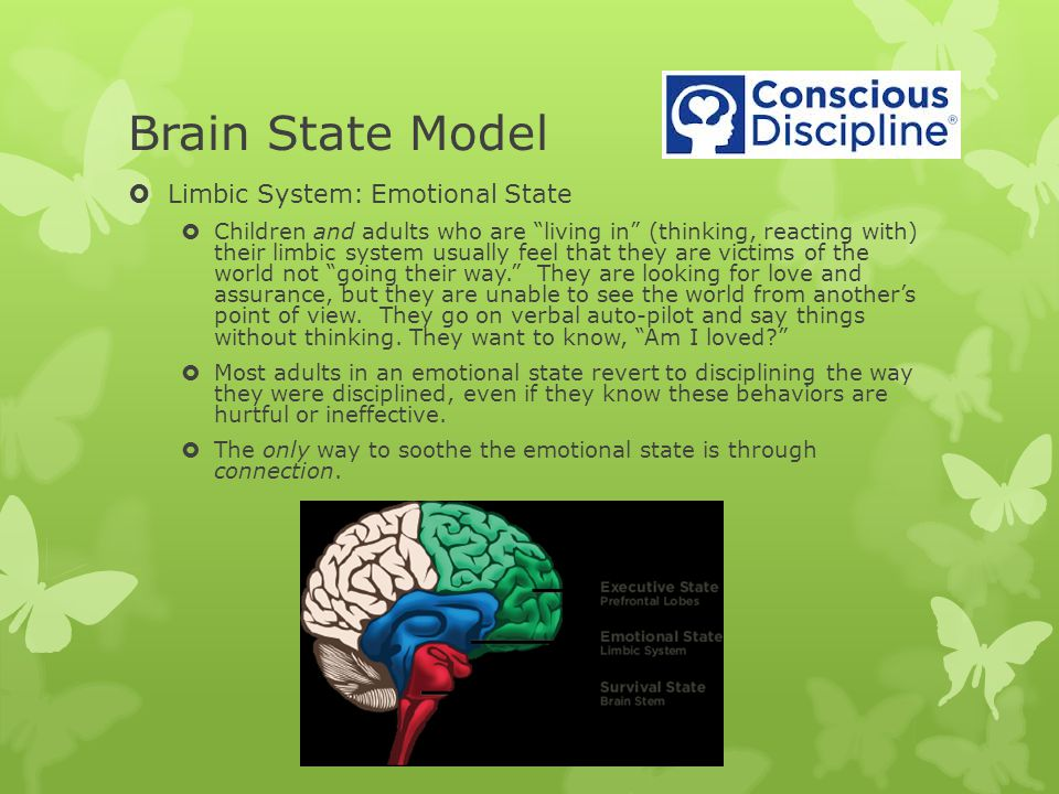 Brain State Model Limbic System: Emotional State