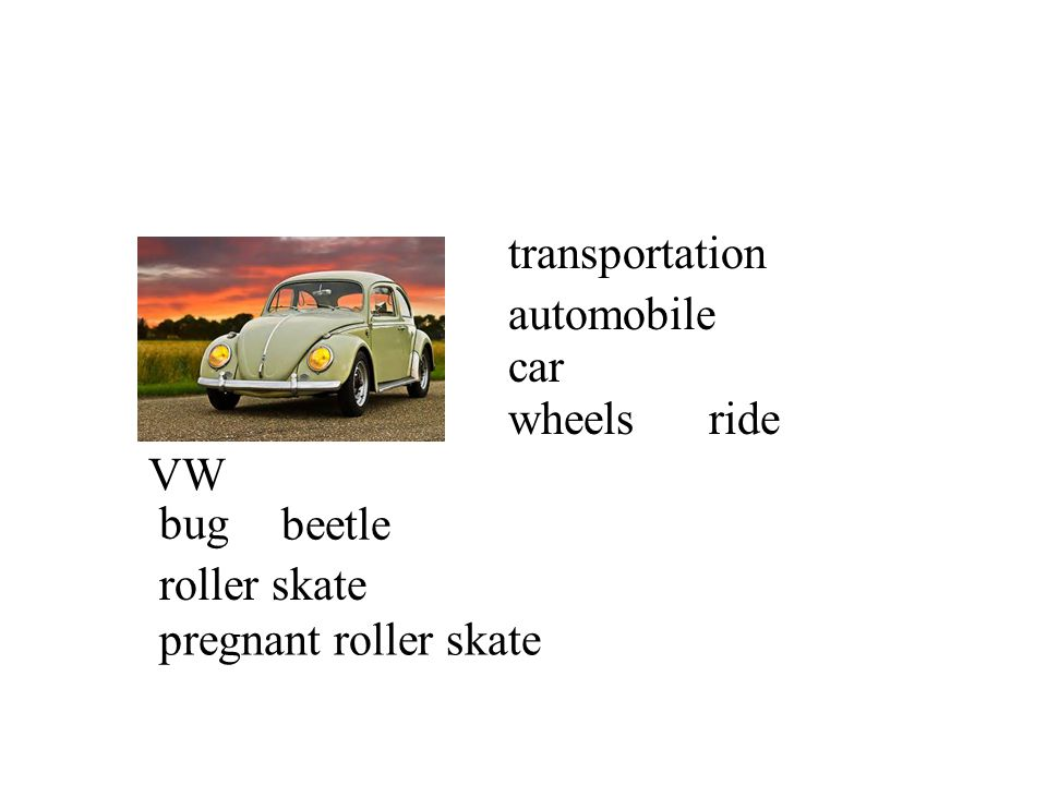 transportation automobile car wheels ride VW bug beetle roller skate pregnant roller skate