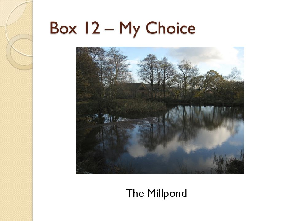 Box 12 – My Choice The Millpond