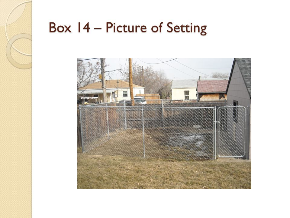 Box 14 – Picture of Setting
