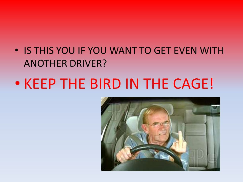 KEEP THE BIRD IN THE CAGE!