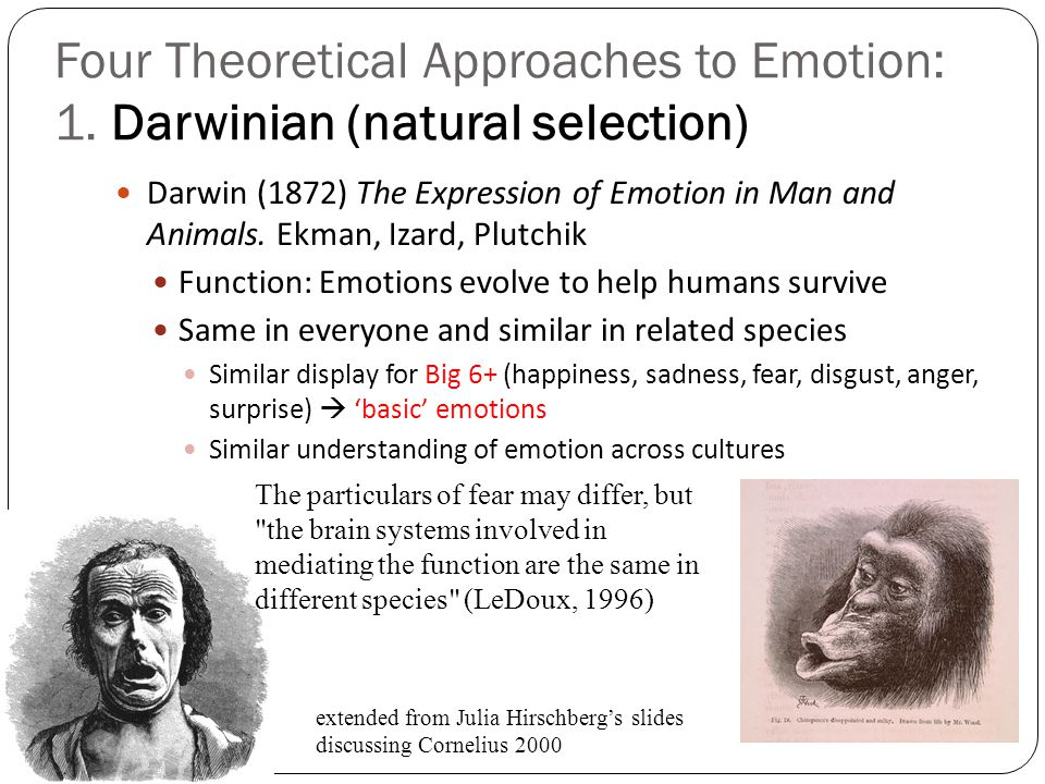 Four Theoretical Approaches to Emotion: 1
