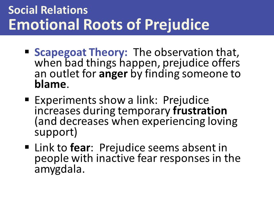 Social Relations Emotional Roots of Prejudice