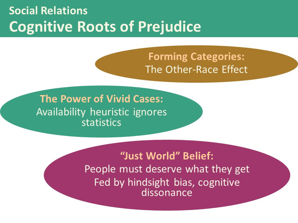 Social Relations Cognitive Roots of Prejudice