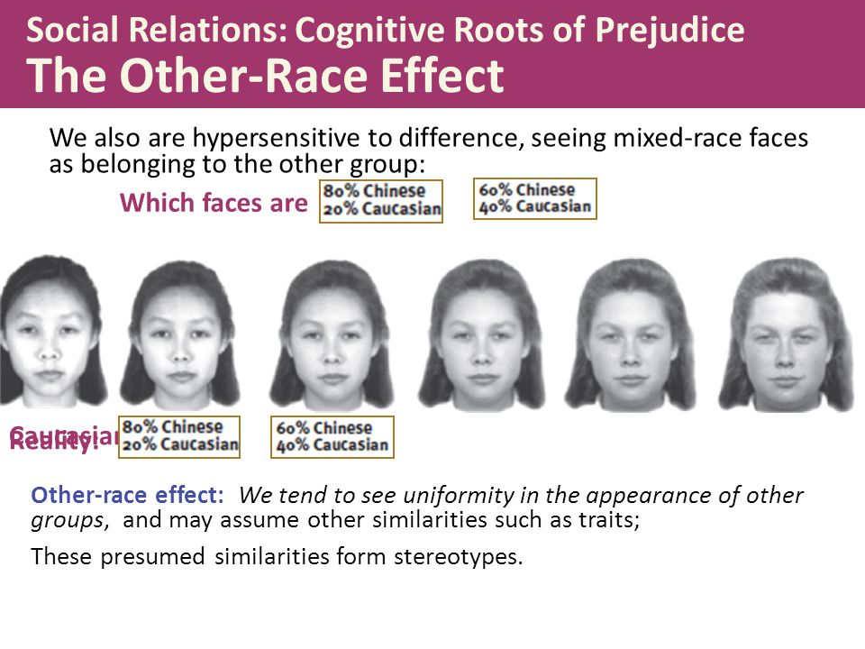 Social Relations: Cognitive Roots of Prejudice The Other-Race Effect