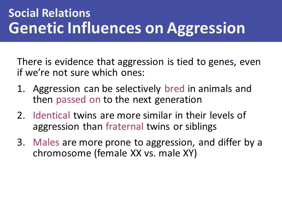 Genetic Influences on Aggression