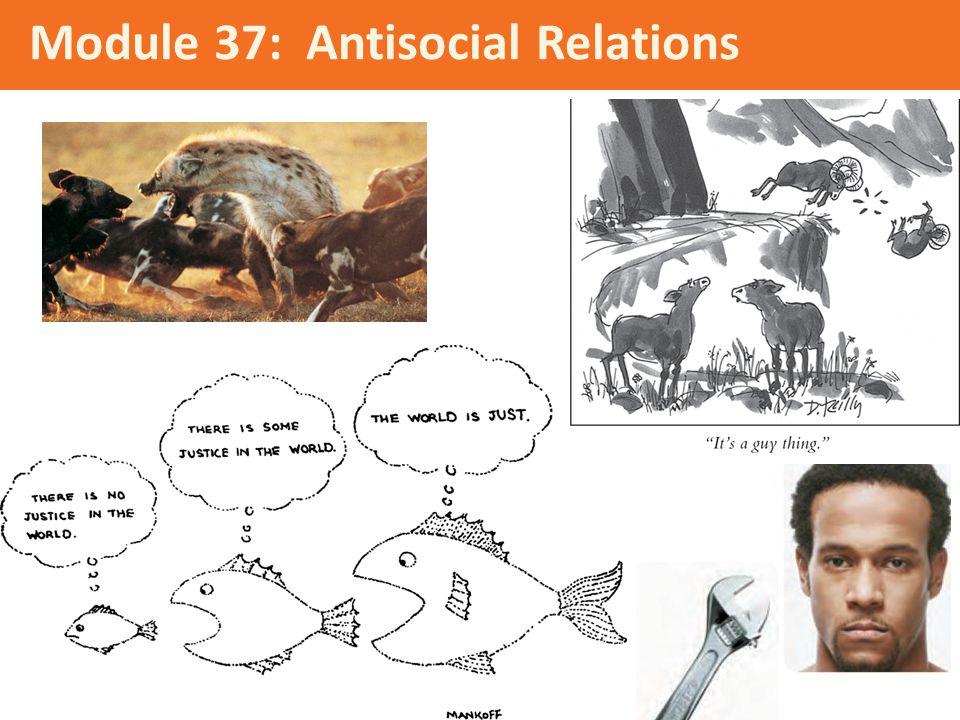 Module 37: Antisocial Relations
