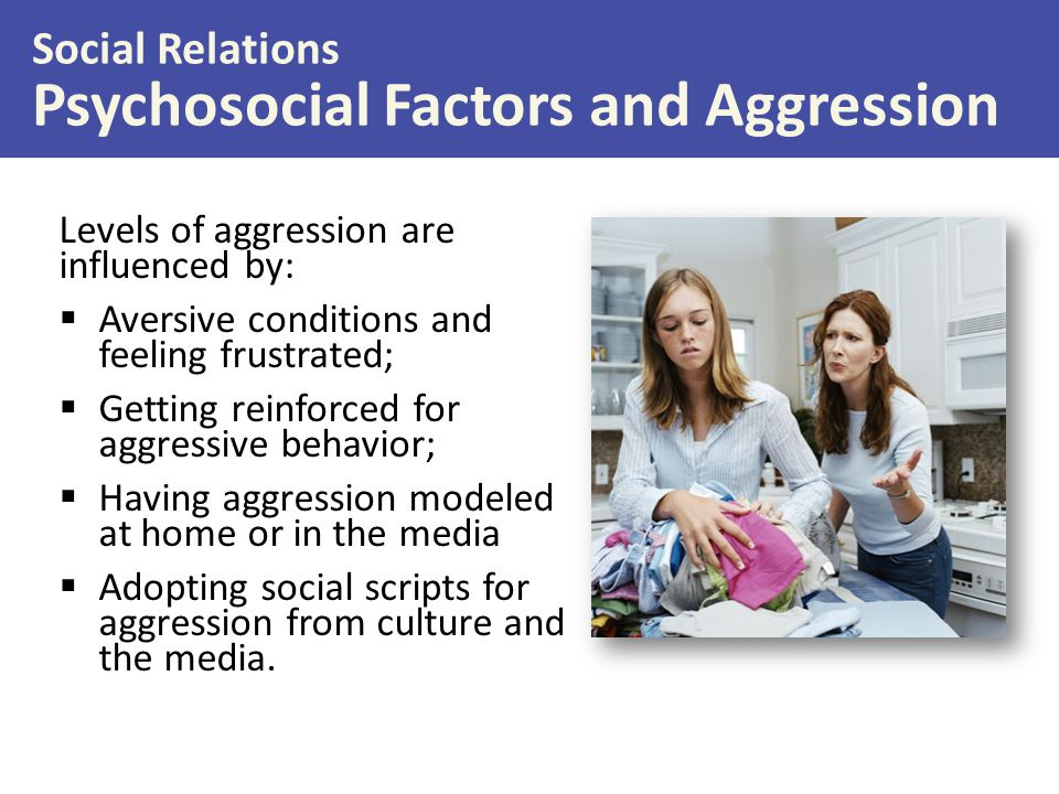 Psychosocial Factors and Aggression
