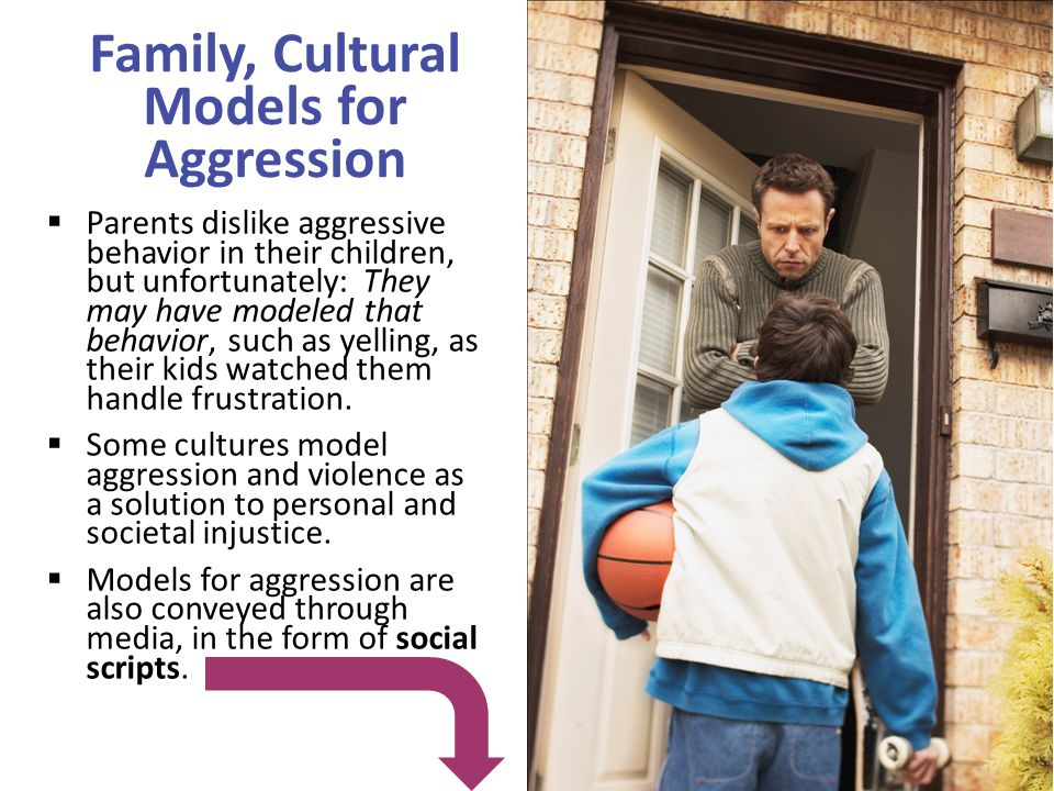 Family, Cultural Models for Aggression