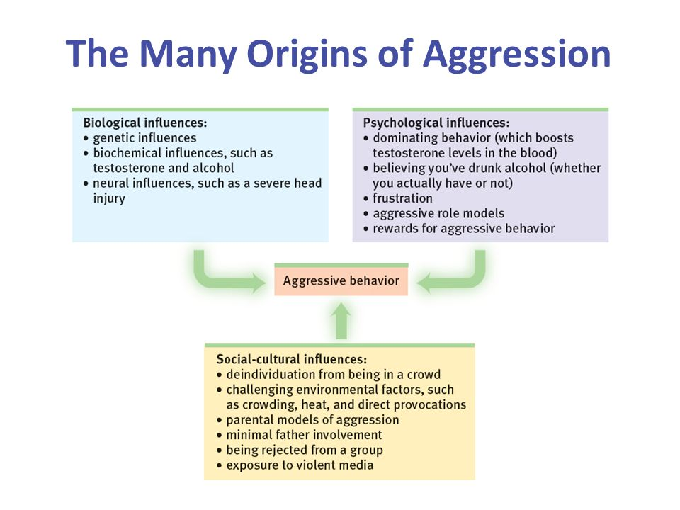 The Many Origins of Aggression