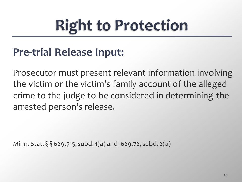 Right to Protection Pre-trial Release Input: