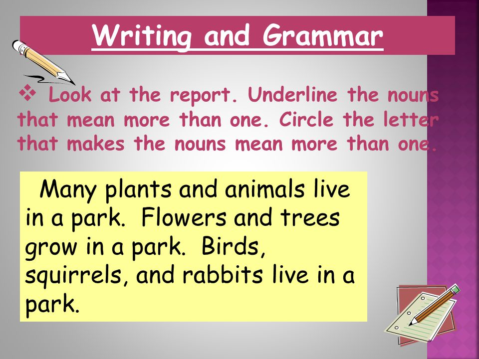 Writing and Grammar Look at the report. Underline the nouns that mean more than one. Circle the letter that makes the nouns mean more than one.