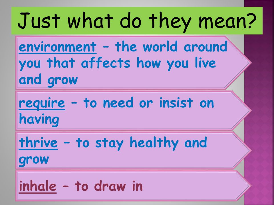 Just what do they mean environment – the world around you that affects how you live and grow. require – to need or insist on having.
