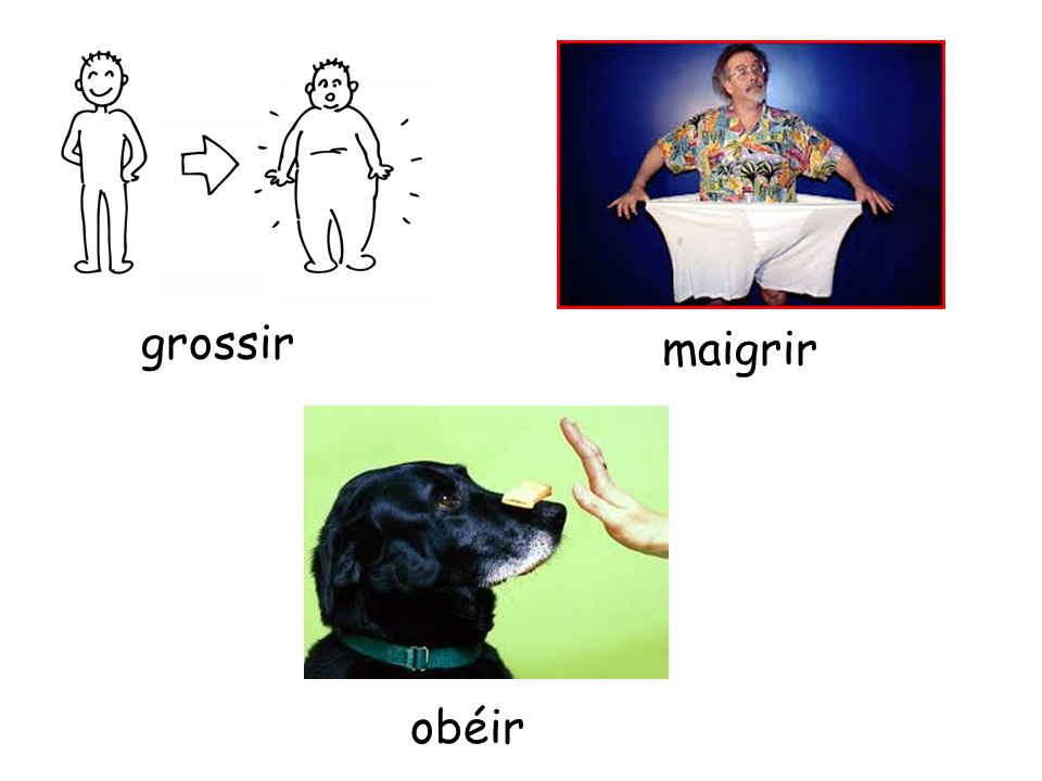 grossir maigrir obéir