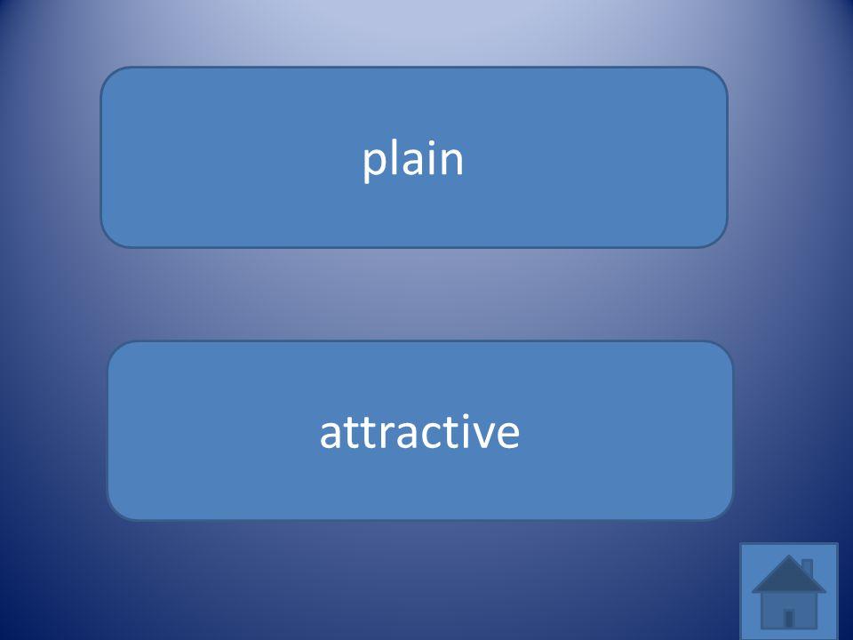 plain attractive