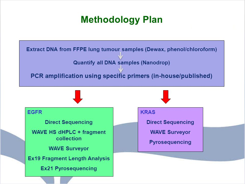 Methodology Plan Extract DNA from FFPE lung tumour samples (Dewax, phenol/chloroform) Quantify all DNA samples (Nanodrop)