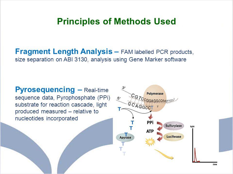 Principles of Methods Used