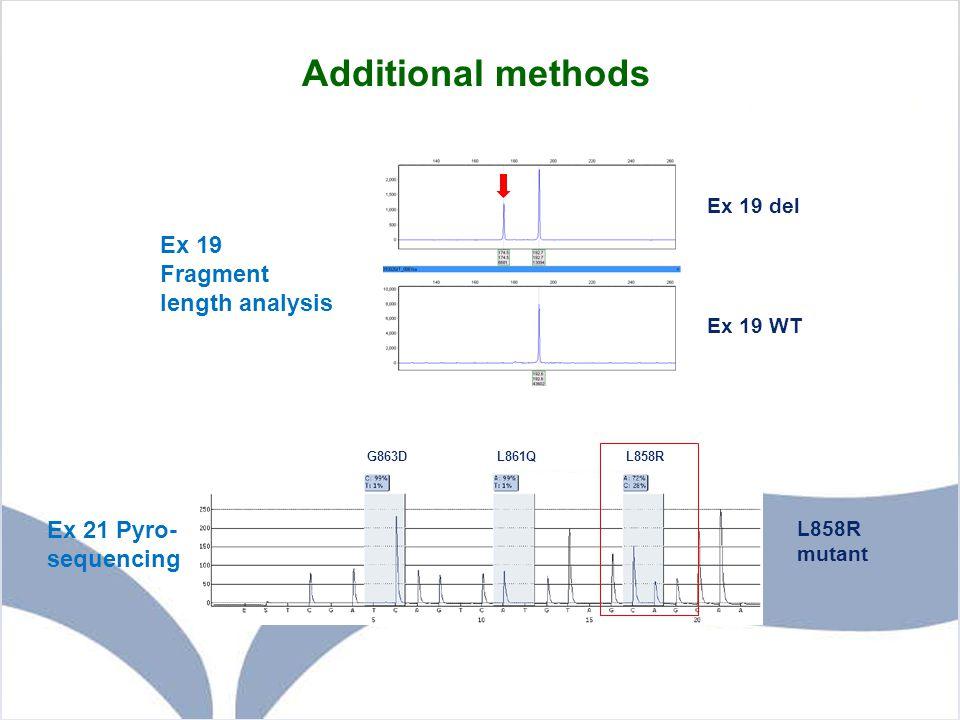 Additional methods Ex 19 Fragment length analysis