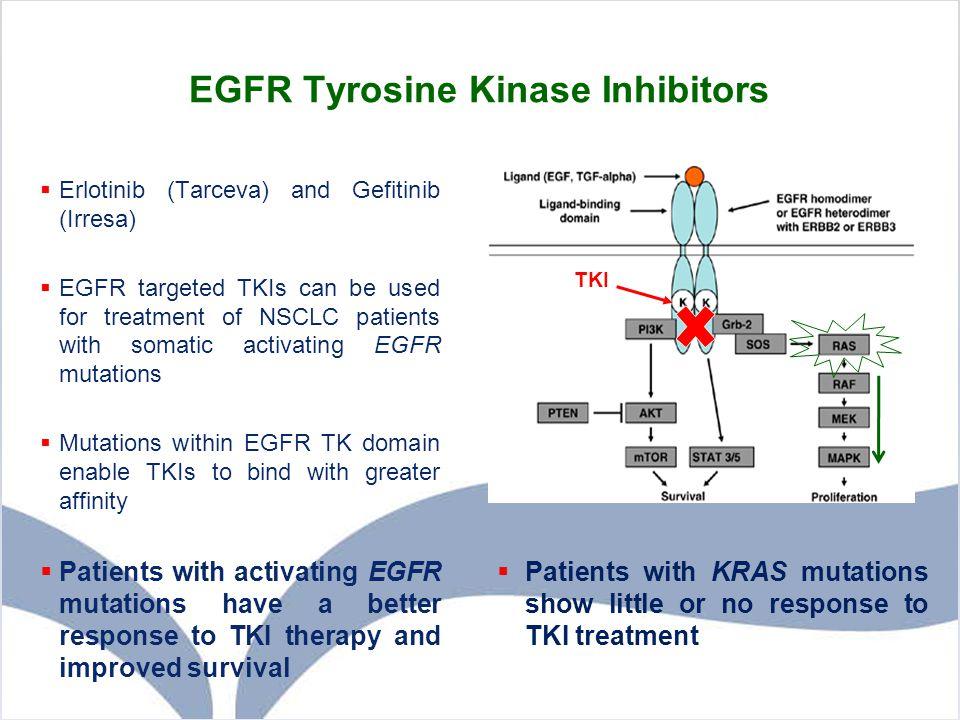 EGFR Tyrosine Kinase Inhibitors