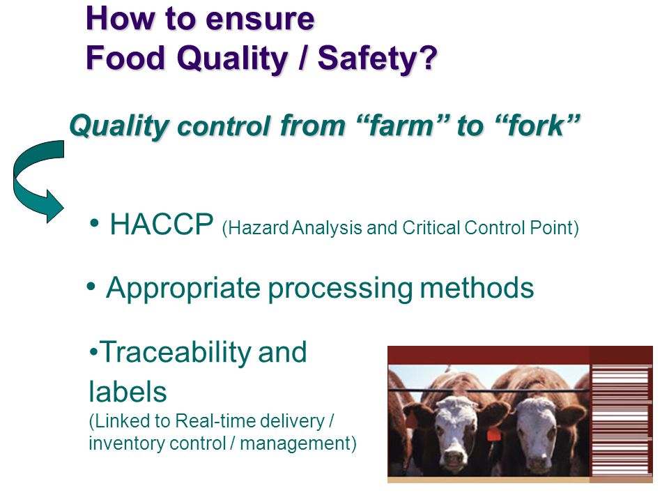 How to ensure Food Quality / Safety