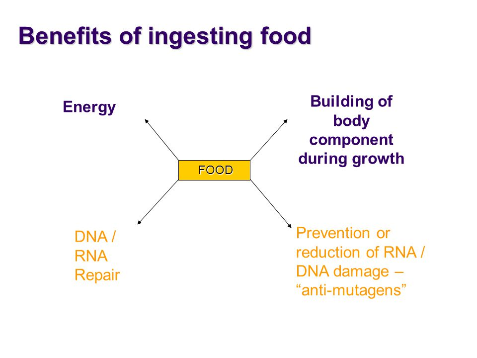 Benefits of ingesting food