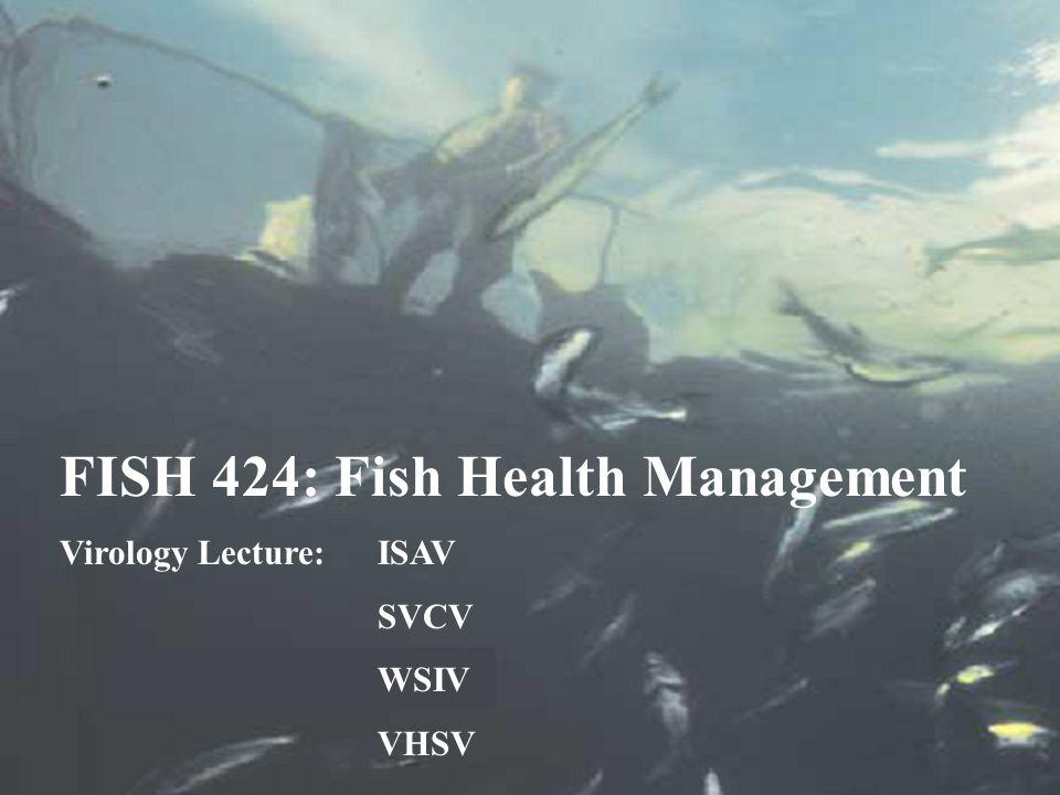 FISH 424: Fish Health Management