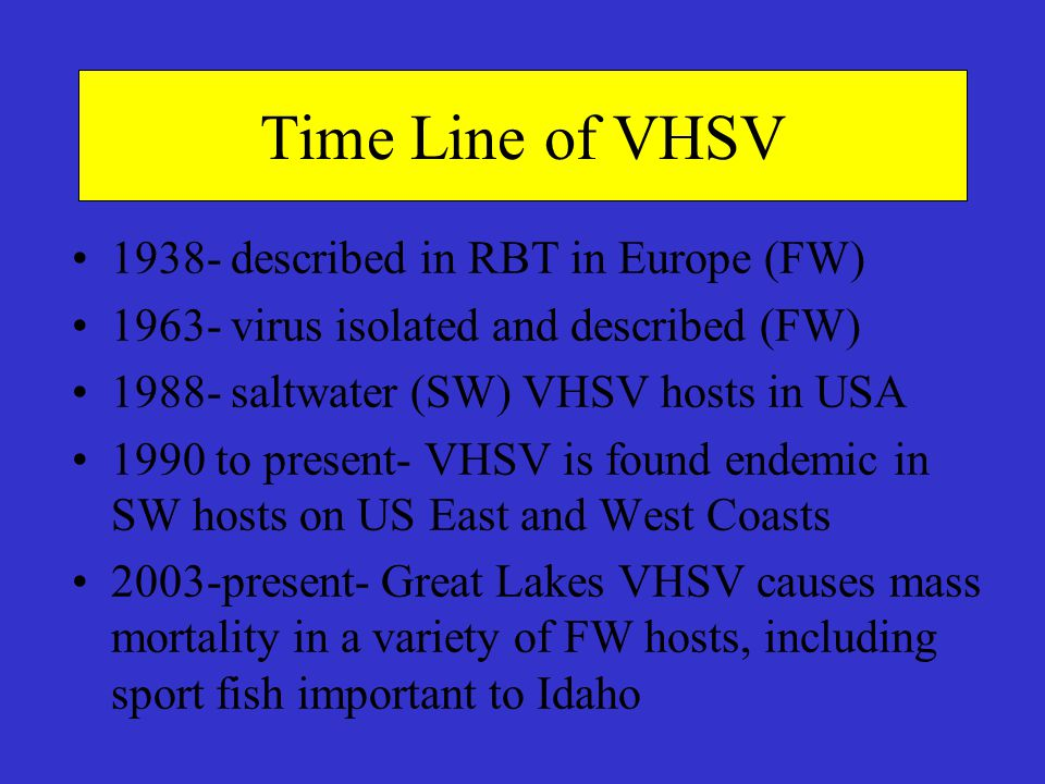 Time Line of VHSV 1938- described in RBT in Europe (FW)