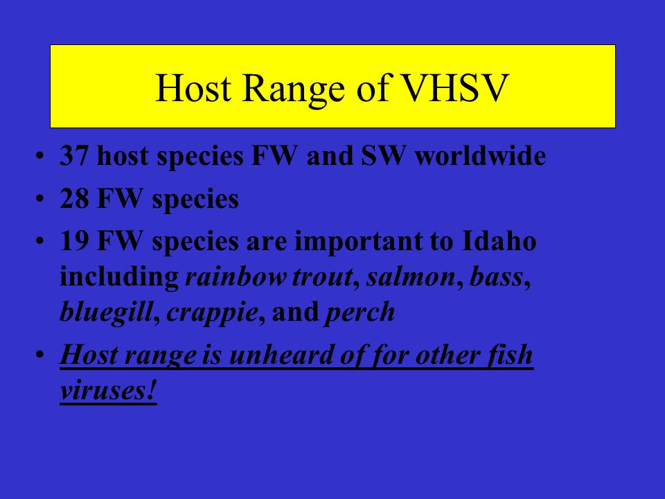 Host Range of VHSV 37 host species FW and SW worldwide 28 FW species