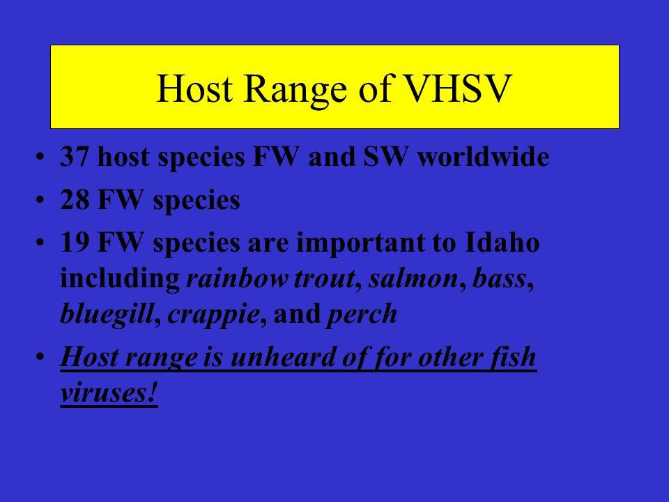 Host Range of VHSV 37 host species FW and SW worldwide 28 FW species