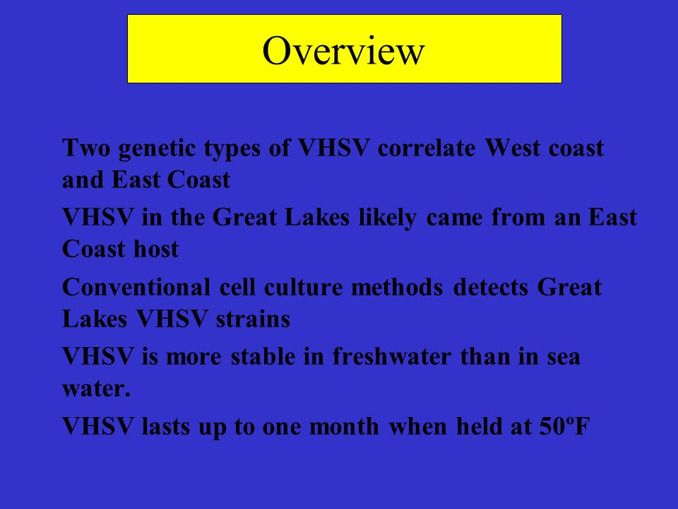 Overview Two genetic types of VHSV correlate West coast and East Coast