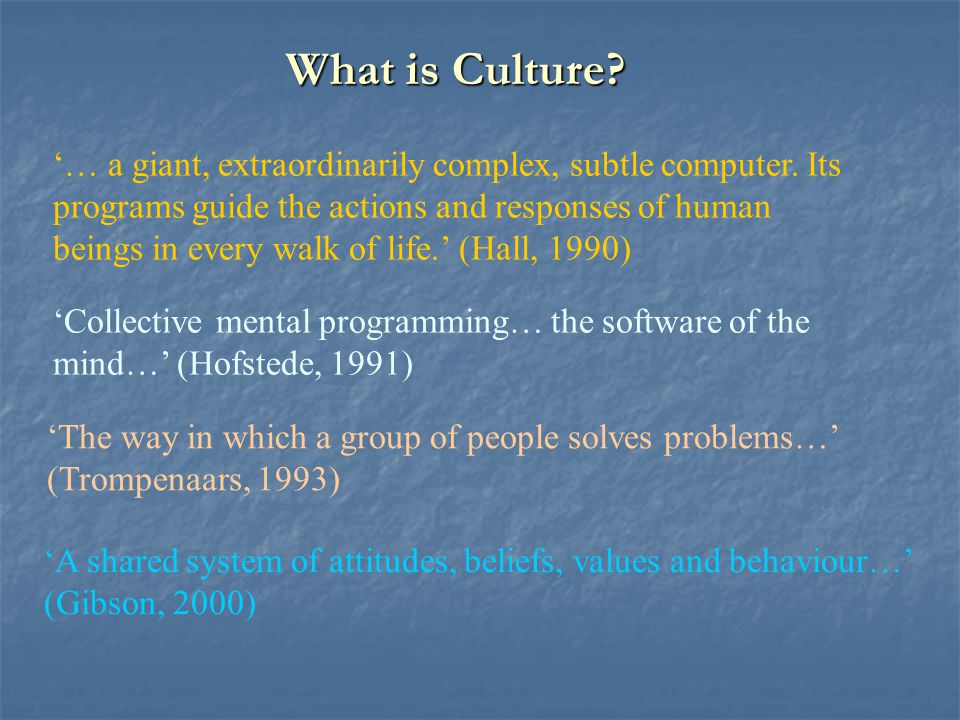 What is Culture