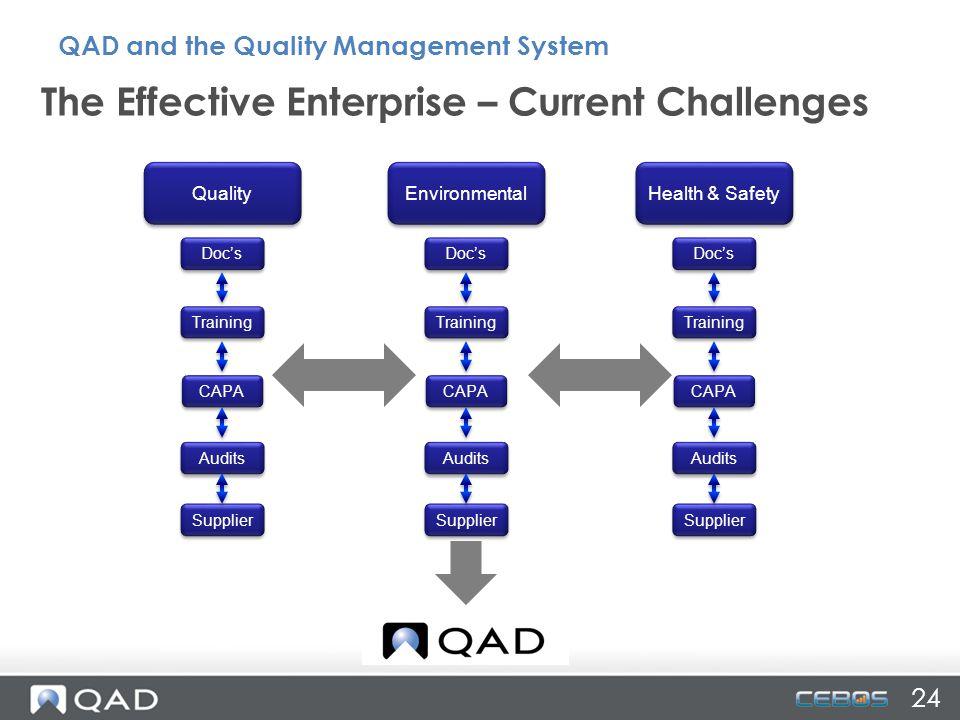 The Effective Enterprise – Current Challenges