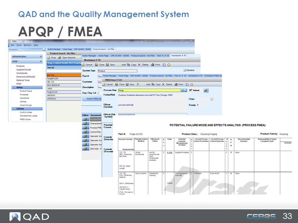 QAD and the Quality Management System